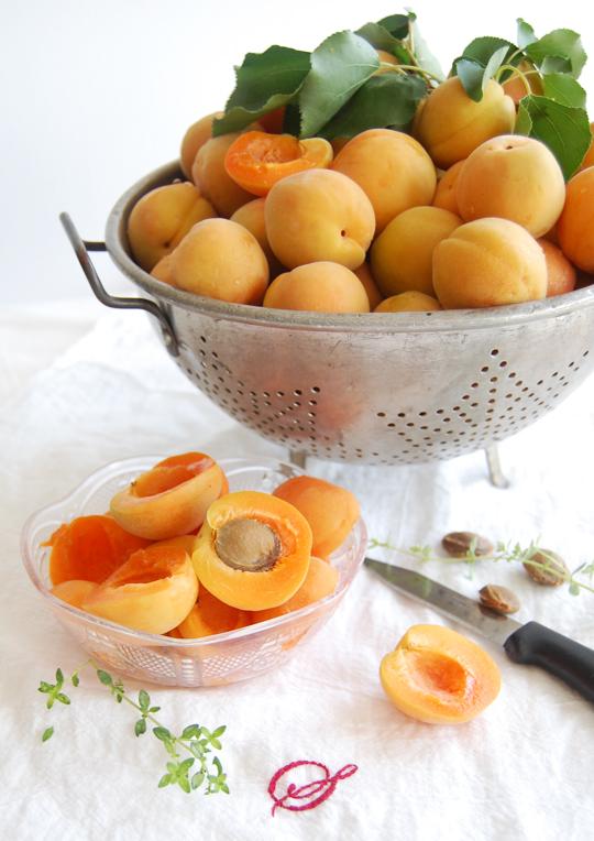 Apricot Vanilla Jam 2