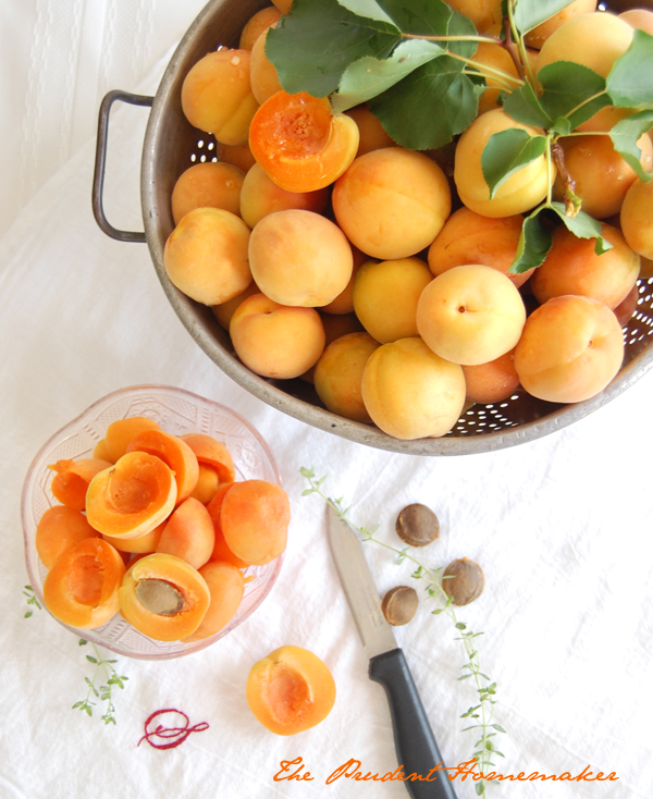 How to Thin Your Fruit Trees