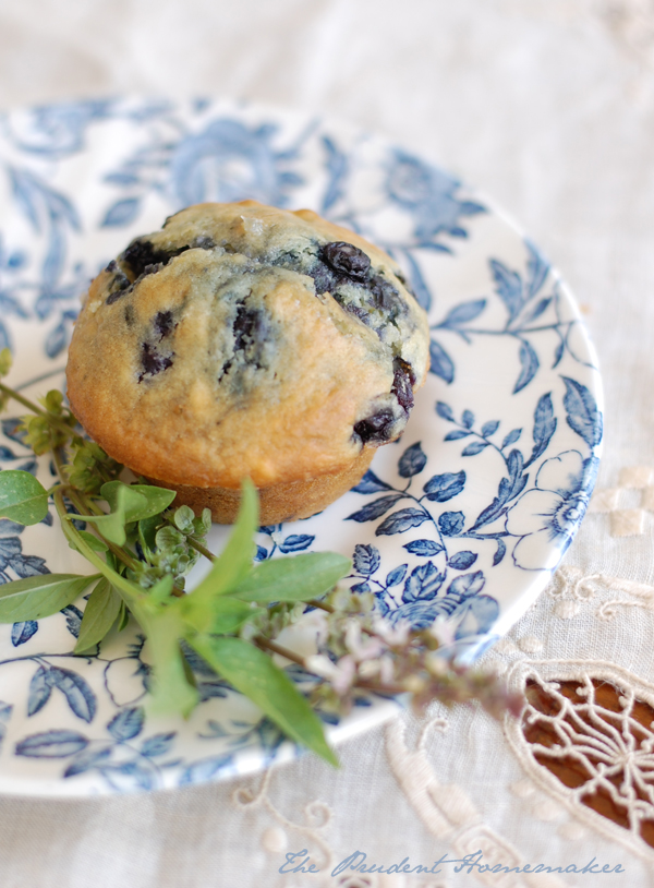 Blueberry Muffins 2 The Prudent Homemaker
