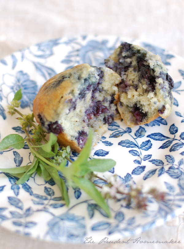 Blueberry Muffins The Prudent Homemaker