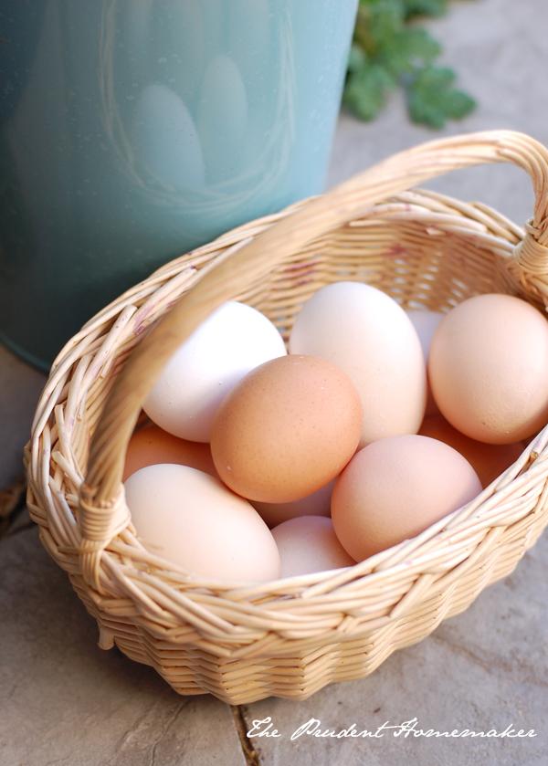 Eggs The Prudent Homemaker