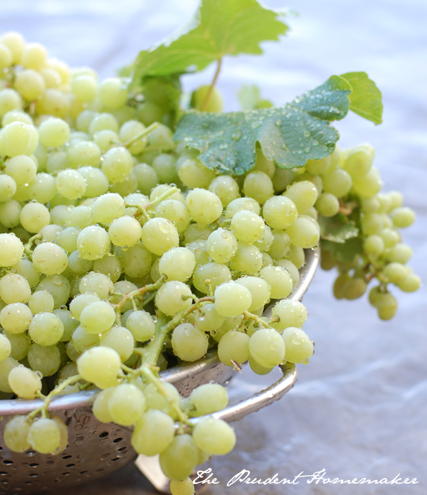 Grapes The Prudent Homemaker