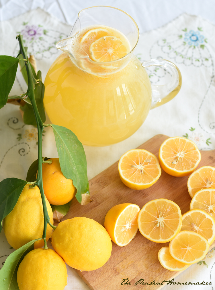 Lemonade 2 The Prudent Homemaker