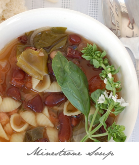 Minestrone Soup Button