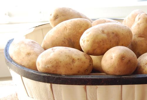 Potatoes 500