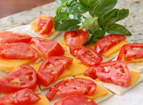 Tomato Cheddar Sandwiches
