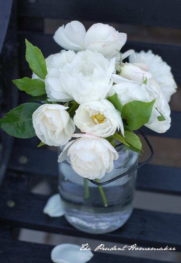 White Flowers on Black Bench 2 The Prudent Homemaker