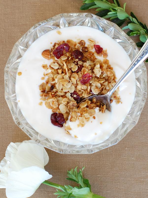 Granola on yogurt-600