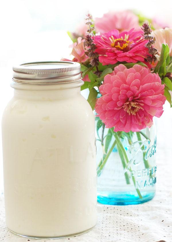 Greek Yogurt The Prudent Homemaker