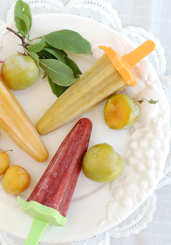Plum Popsicles The Prudent Homemaker