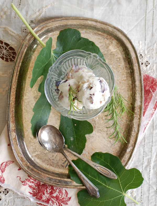 Rosemary Fig Gelato The Prudent Homemaker