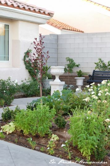 White Garden Reveal