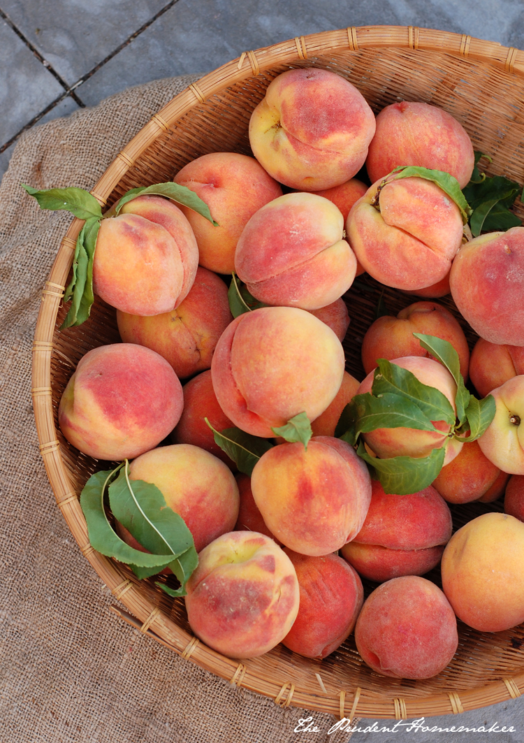 Early Elberta Peaches 2 The Prudent Homemaker