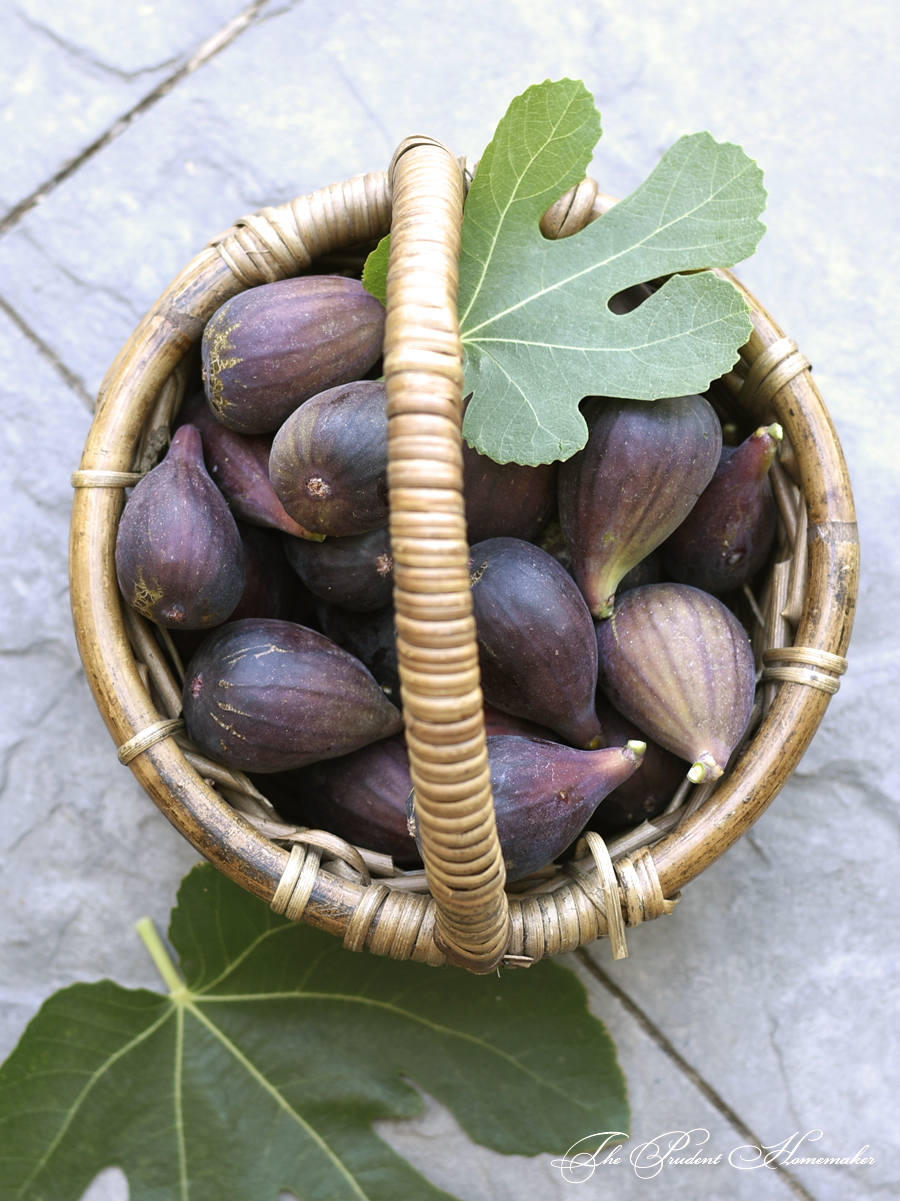 Mission Figs in basketThe Prudent Homemaker
