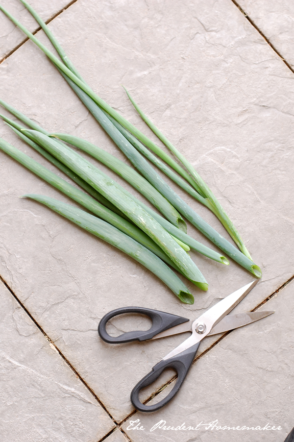Green Onions with scissors The Prudent Homemaker