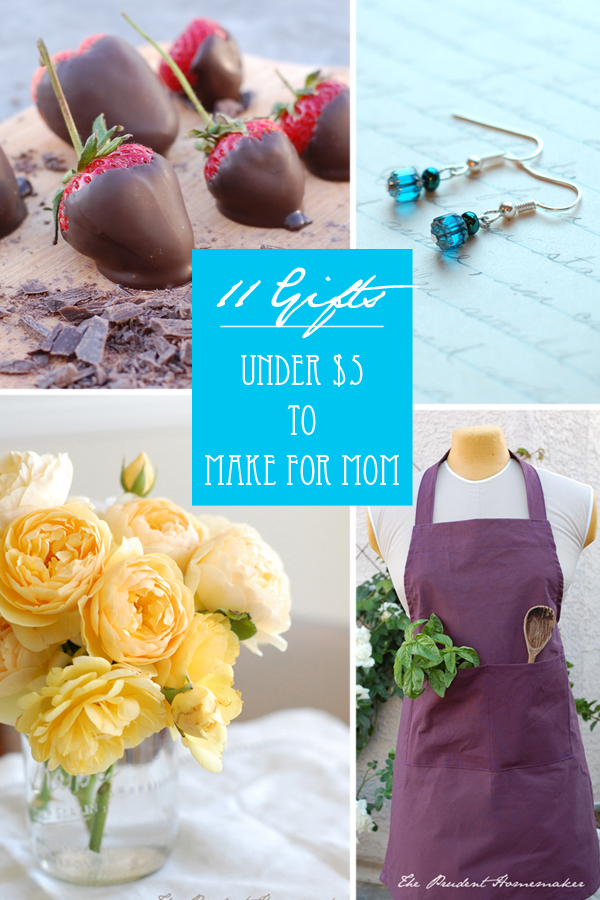 Mothers Day Gifts Under 5 The Prudent Homemaker