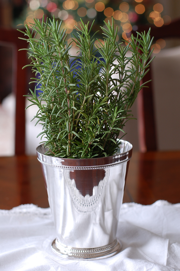 Rosemary on Table The Prudent Homemaker