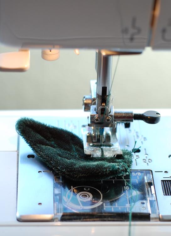 Rose leaves sewing veins