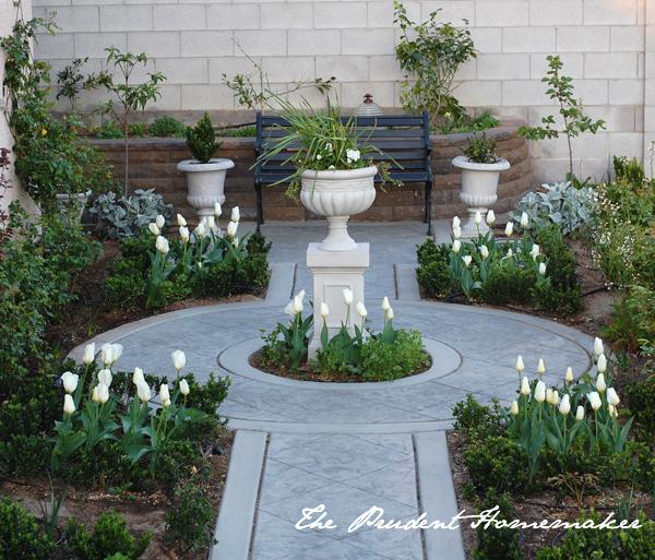 Tulips in the White Garden The Prudent Homemaker