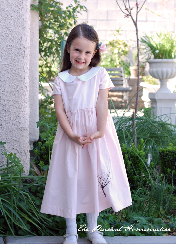 Elsa Birthday Dress 2 The Prudent Homemaker