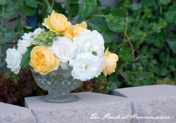Roses in Glass Bowl The Prudent Homemaker