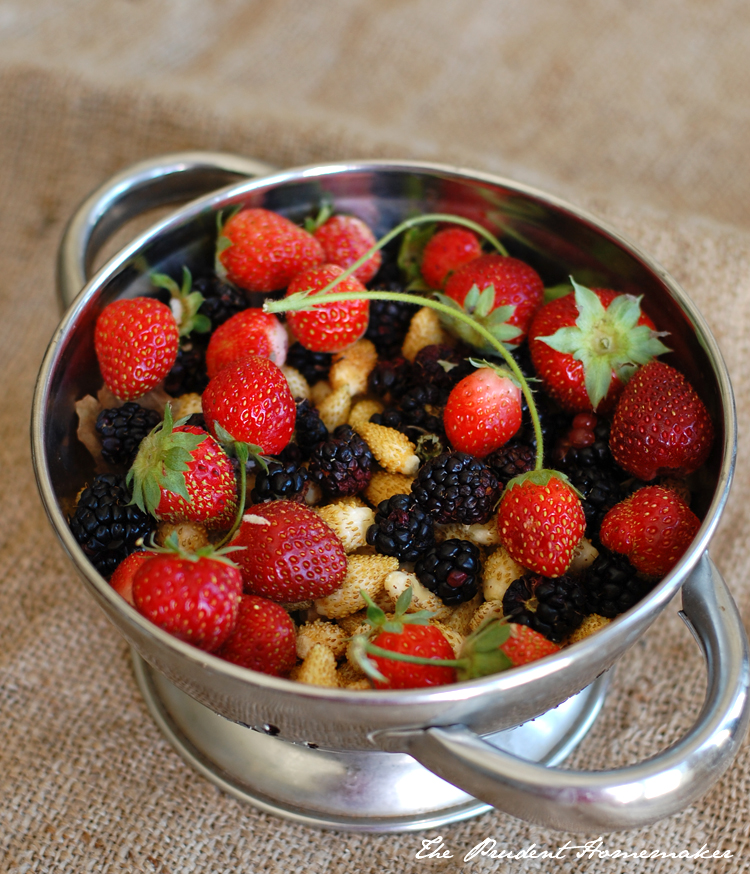 Berries in Colander The Prudent Homemaker