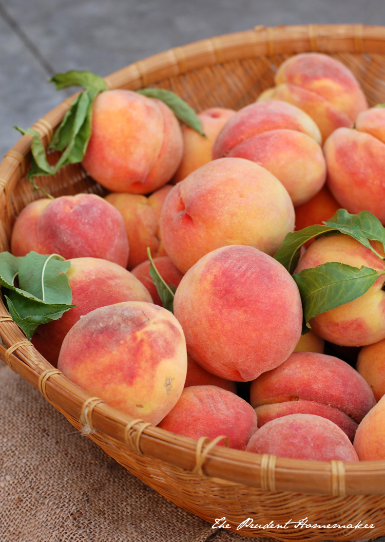 Early Elberta Peaches The Prudent Homemaker