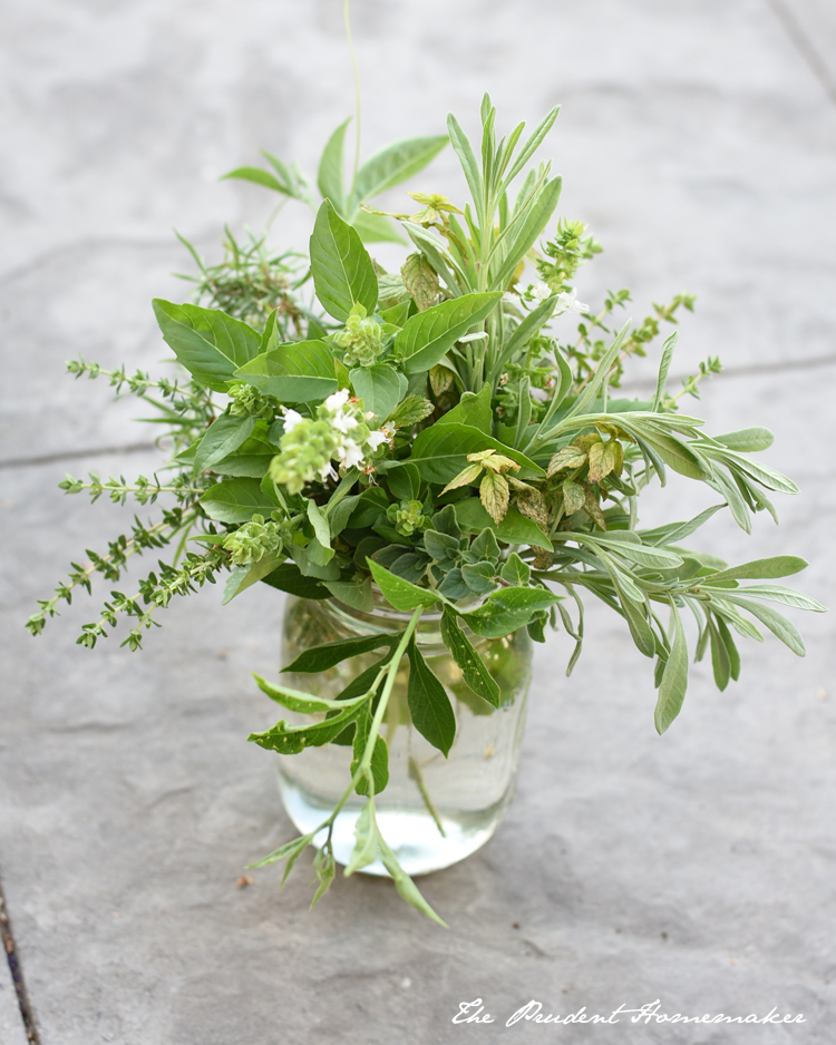 Herb Arrangement The Prudent Homemaker
