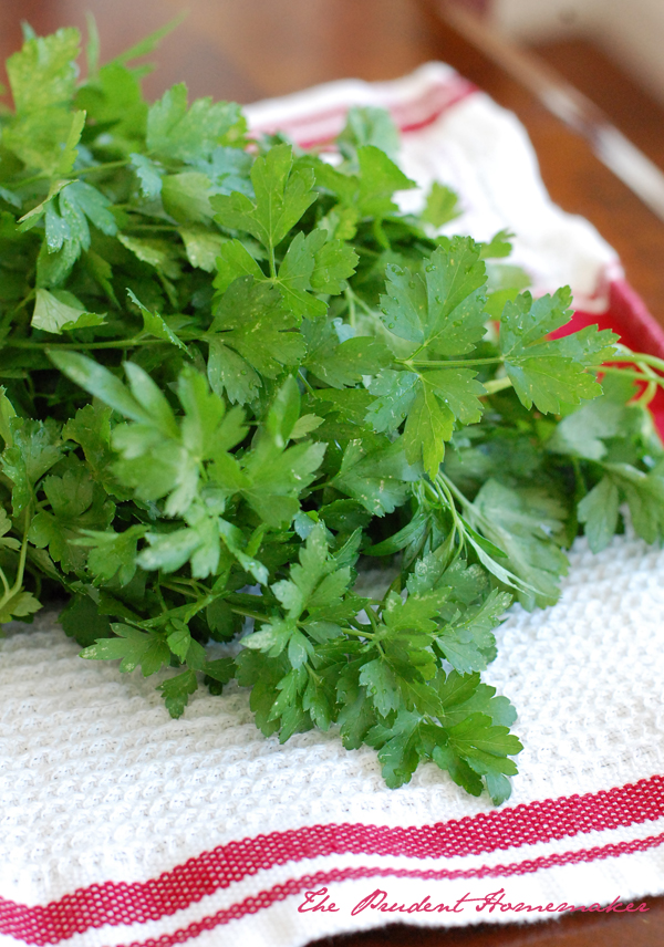 Parsley on Washcloth The Prudent Homemaker