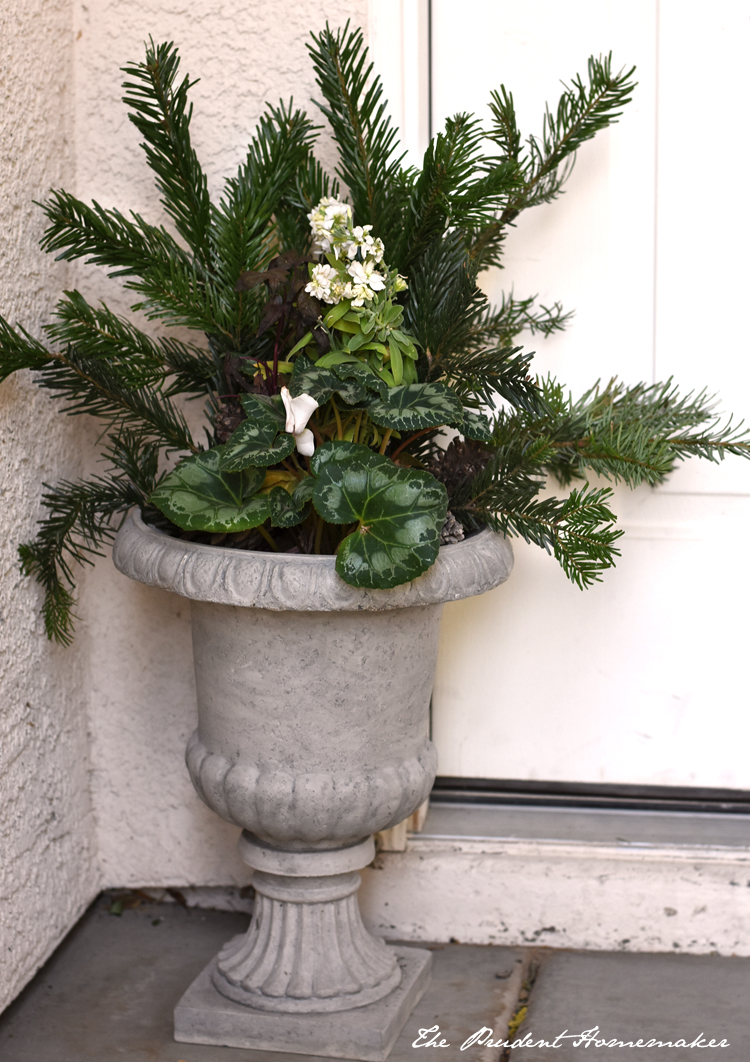 Christmas Urn The Prudent Homemaker