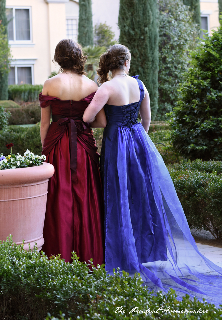 Step-sisters dresses from behind The Prudent Homemaker