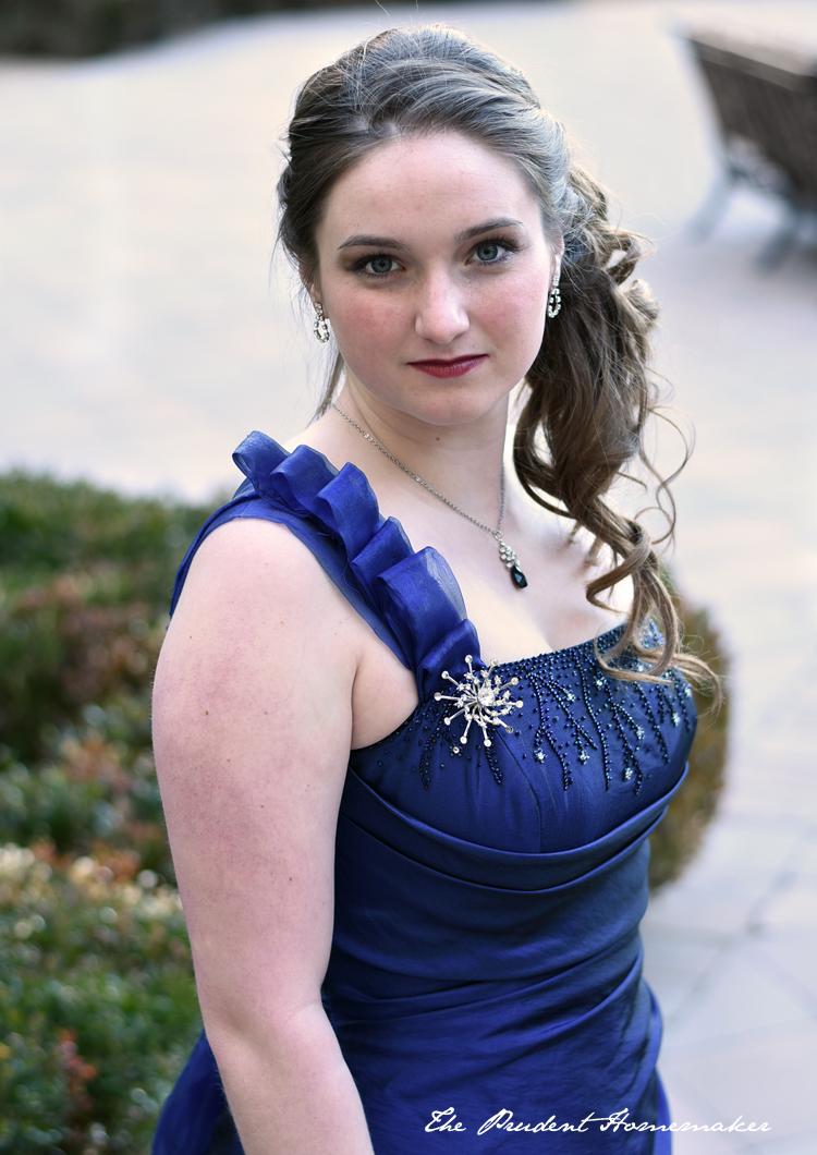 Stepsister Blue Dress Bodice The Prudent Homemaker