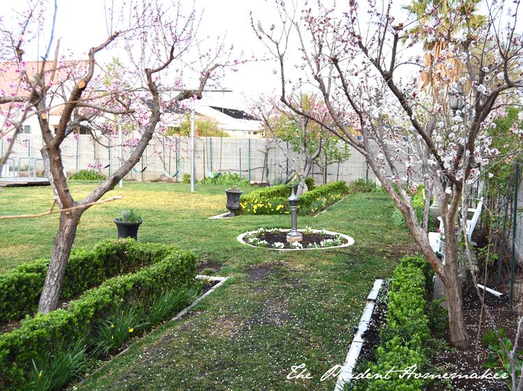 Garden in March 2 The Prudent Homemaker