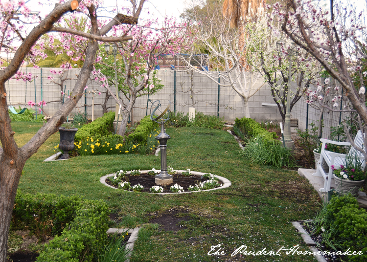 Garden in March  circle 2 The Prudent Homemaker