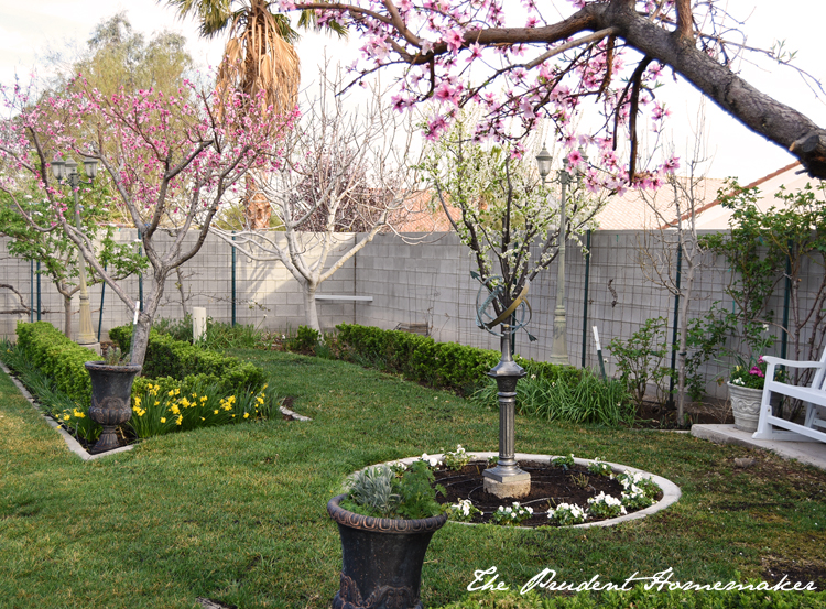Garden in March center circle The Prudent Homemaker