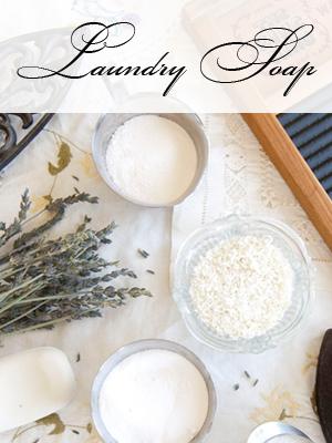 Laundry Soap Sidebar