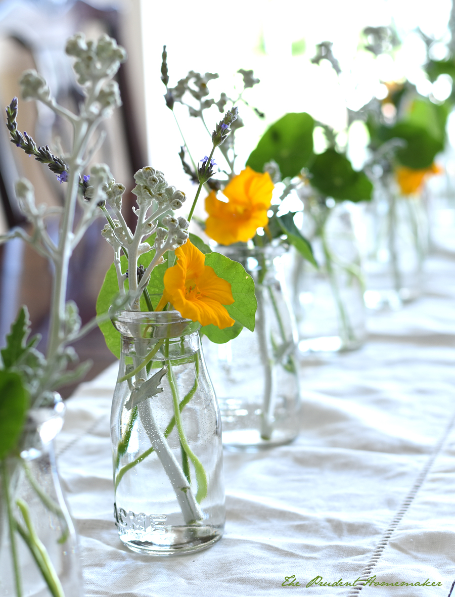 Nasturtiums and Dusty Miller in Milk Bottles The Prudent Homemaker