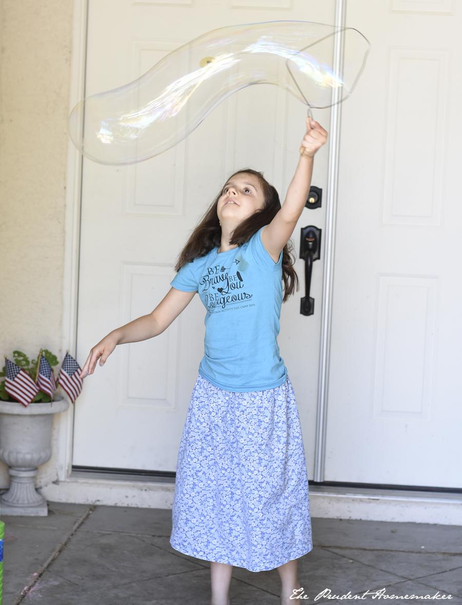Wren Bubbles The Prudent Homemaker