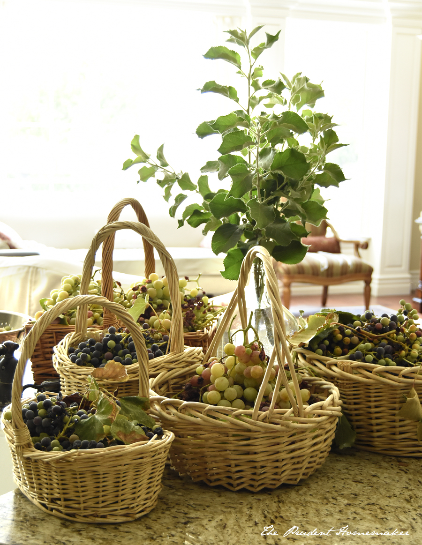 Grape Harvest The Prudent Homemaker
