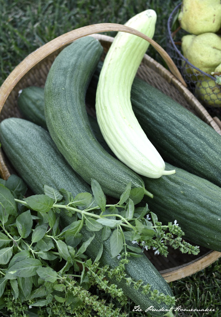 August Garden Harvest and a Month Without Grocery Shopping