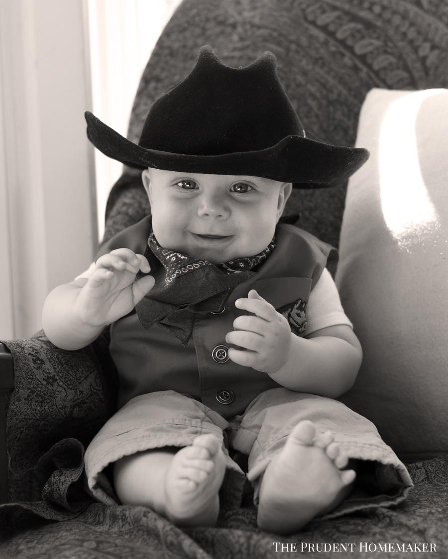 Octavius Cowboy The Prudent Homemaker