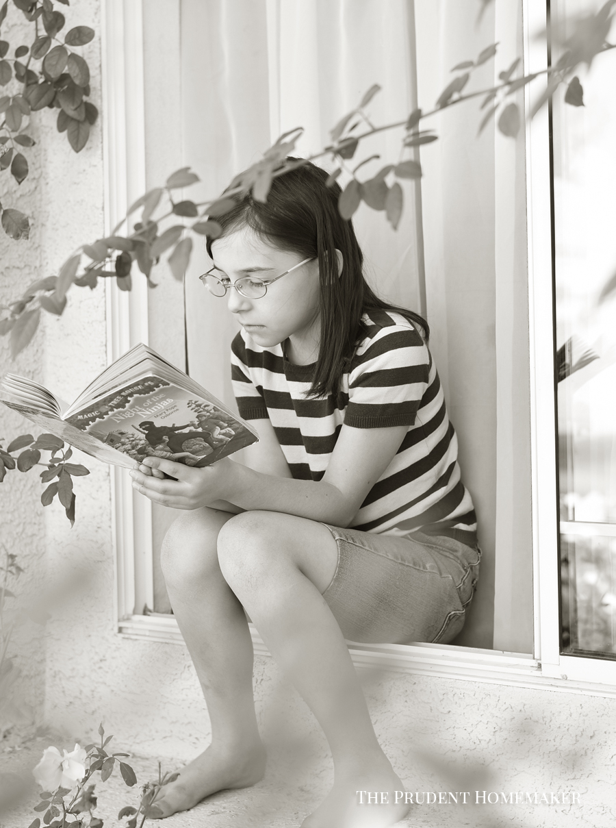 Reading in the Window The Prudent Homemaker