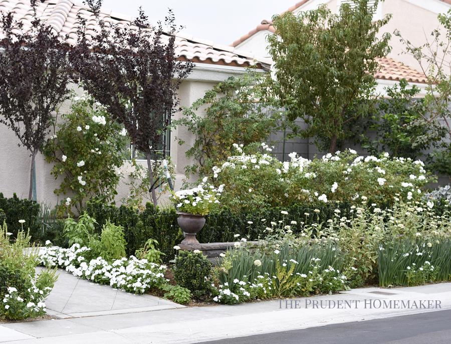 White Garden in October The Prudent Homemaker