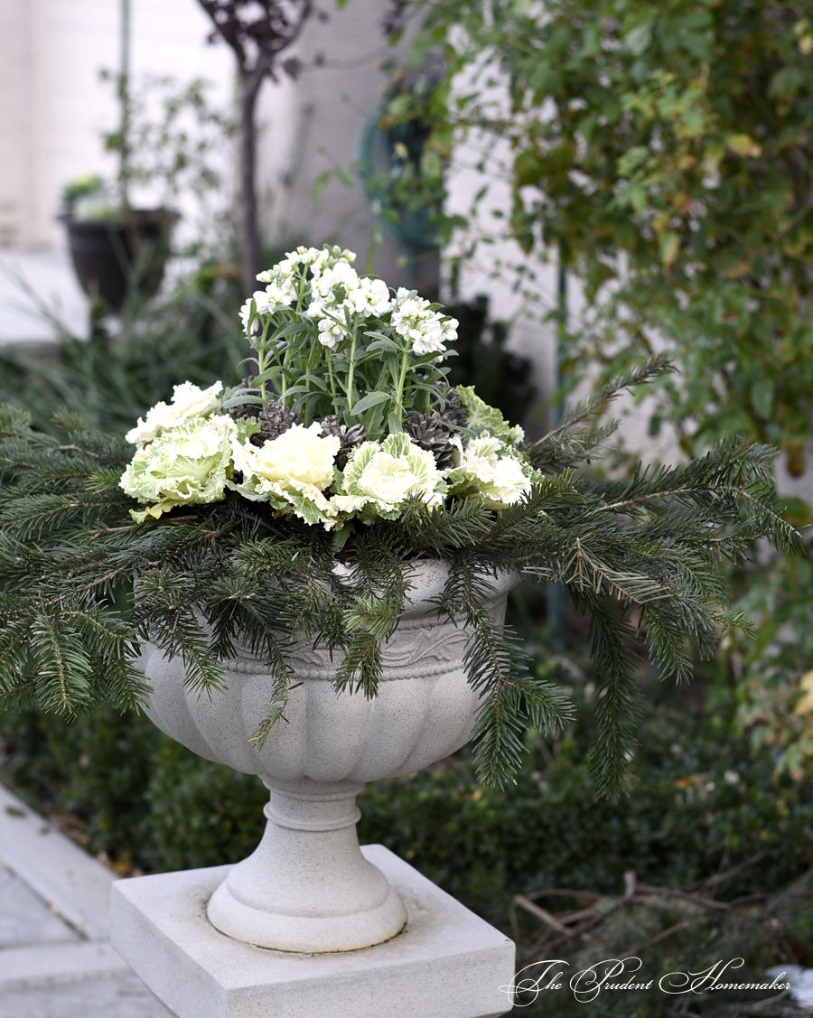 Winter White Garden Urns