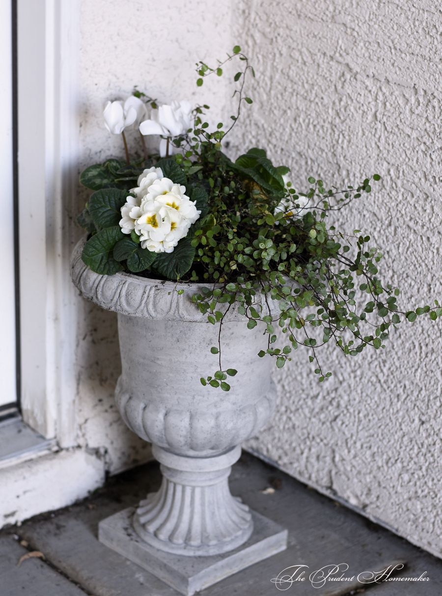 Winter White Urn by Door The Prudent Homemaker