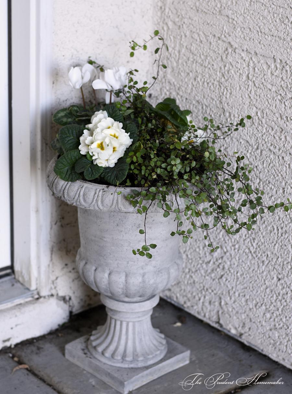 Winter White Urn by Door The Prudent Homemaker