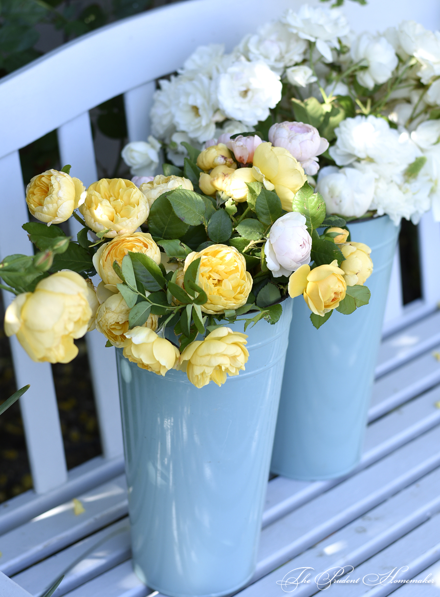 Roses in Enamel Buckets The Prudent Homemaker