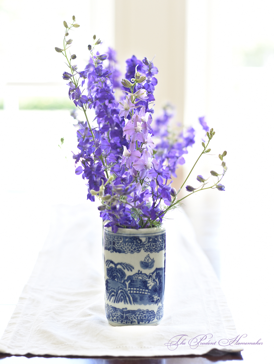 Larkspur in May The Prudent Homemaker