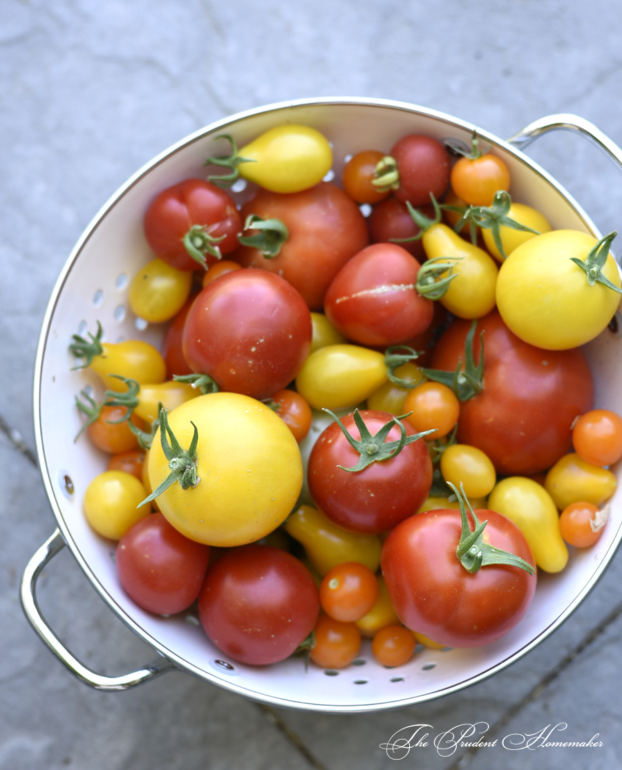 Tomato Medley The Prudent Homemaker