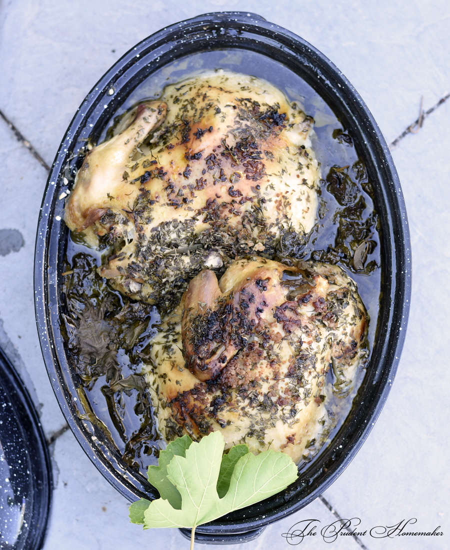 Solar Oven Roasted Chicken The Prudent Homemaker